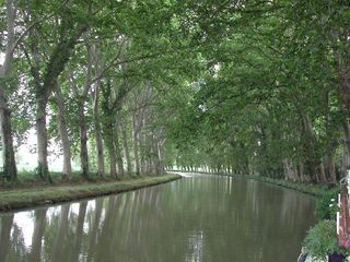 The-canal-du-midi pretty one