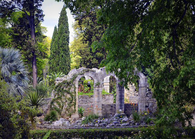 In montpellier cypresses grow as high as news from - Jardin d essence montpellier ...